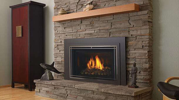 Regency Gas Fireplace Inserts U32 Fireplaces